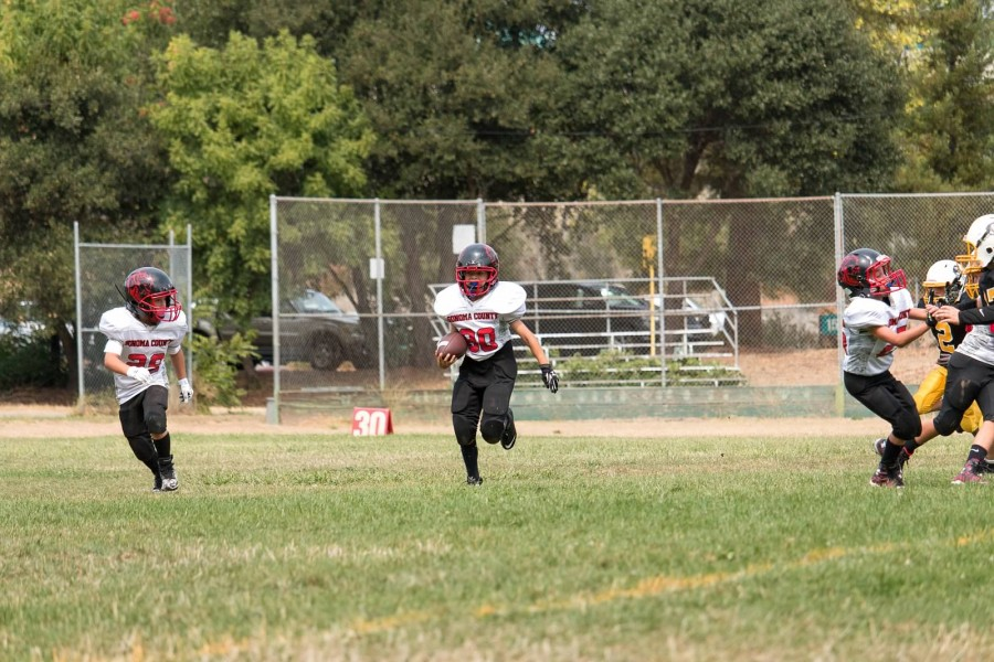 Sonoma County Youth Football and Cheer | Wildcats